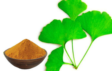 Low Pesticide Residue Ginkgo Biloba 24 6 Extract For Pharmaceutical Raw Material