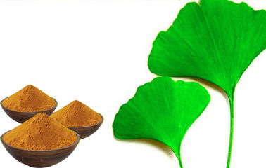 EP9.0 Low Ginkgolic Acid Ginkgo Leaf Extract With Large Certified Seed Seedling Base